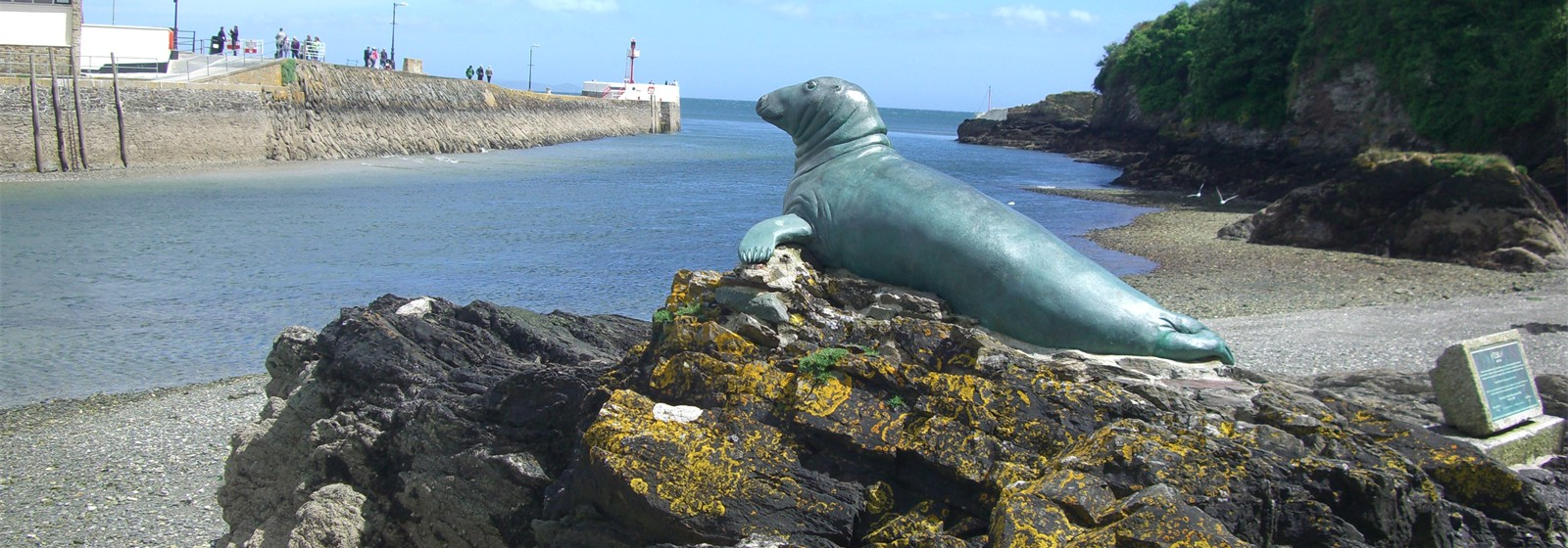 Nelson the Seal in Looe